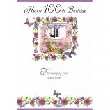 100th Birthday - F Cat/Window