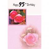 95th Birthday - F PinkRoses