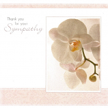 Thank You Pack - 6 x Sympathy
