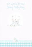 Baby Boy - Kitten