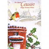 Cousin Xmas - Robin/Postbox