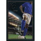Boy Age 16 - Football Blue