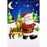 Teacher Xmas - Santa/Reindeer