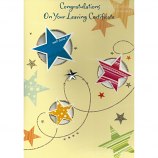 Leaving Certificate - Blue Star