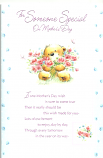 Mothers Day Someone Special Large Bear pink flowers